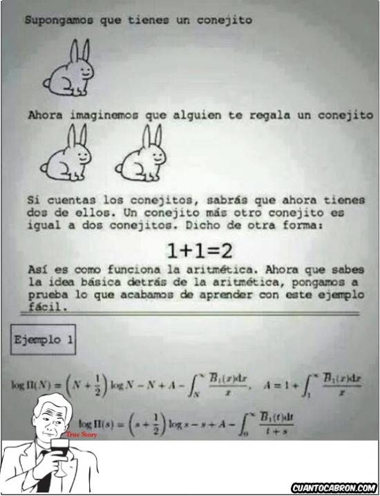 1+1=2,aritmética,conejitos,el que no sabe es porque no quiere,true story