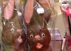 Enlace a Conejitos de chocolate agresivos