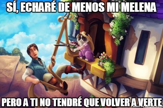 Meme_otros - Y por eso Grumpy Cat no hubiera sido una buena Rapunzel