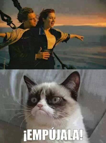 Grumpy_cat - La última vez que veo una peli con Grumpy cat