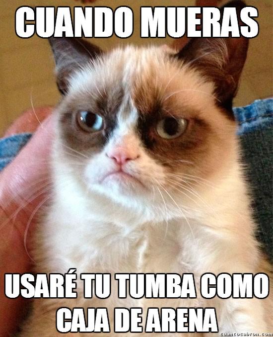 Grumpy_cat - Los deseos sinceros de Grumpy para cuando hayas muerto
