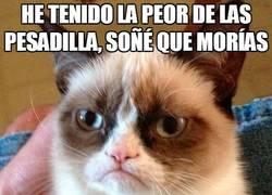 Enlace a La peor pesadilla de Grumpy cat