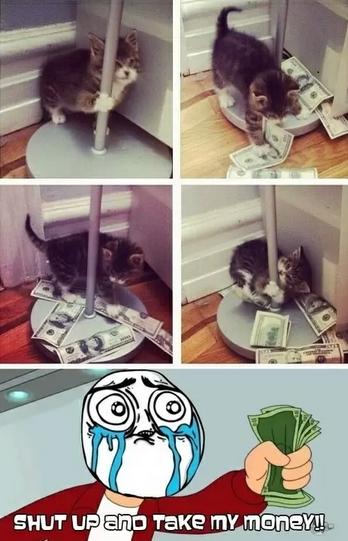 baile,caño,dinero,gato,lampara,palo,ternura