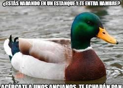 Enlace a El consejo más auto-biográfico que ha dado nunca este pato