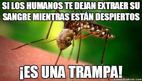Its_a_trap - Y los mosquitos creen que nosotros somo estúpidos de dejarnos picar
