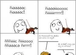 Enlace a Violinista trolleado