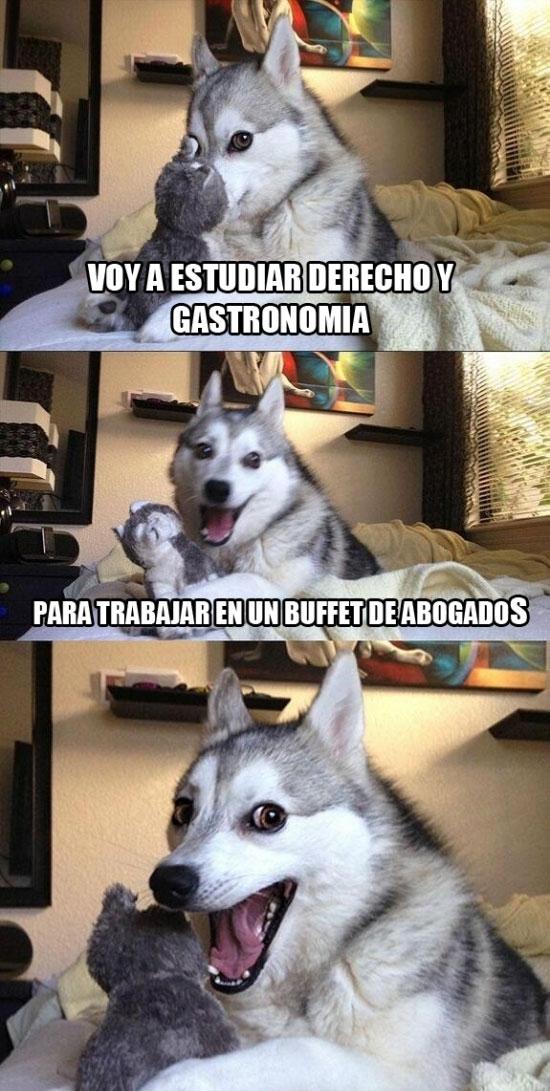 Meme_otros - El perro humorista