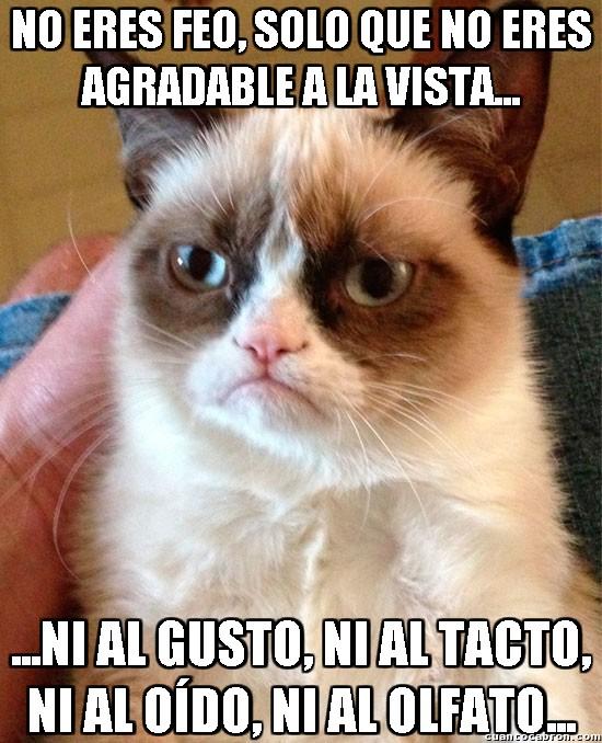 Grumpy_cat - Dicho de esa manera casi que ni ofende