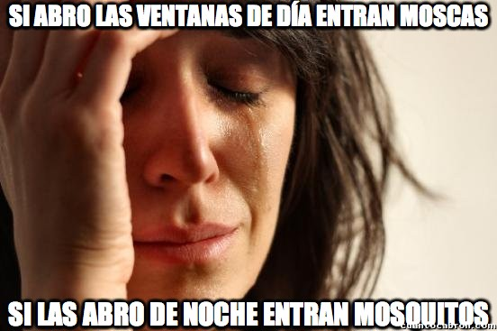 First_world_problems - El veraniego dilema de las ventanas