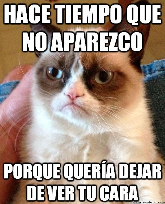 Grumpy_cat - Hasta cuando no está, está de mal humor