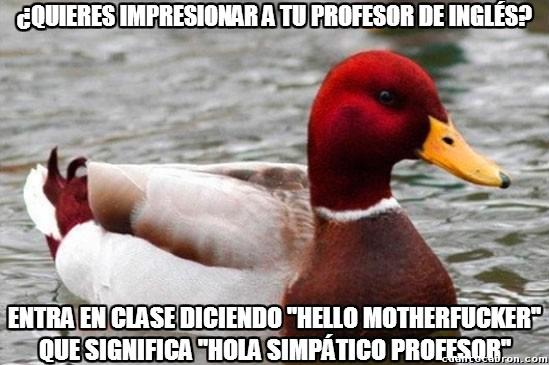 hello,inglés,insultar,insulto,Maestro de Inglés,mal consejo,pato rojo,profesor