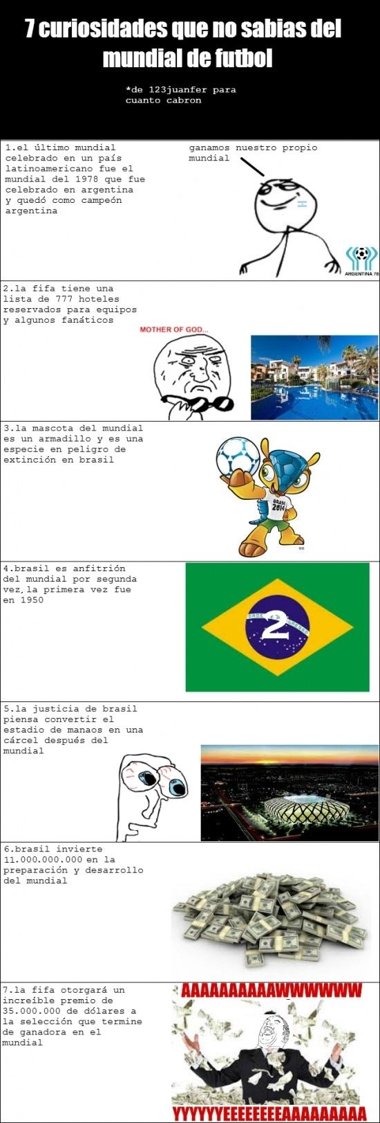 Otros - Curiosidades del Mundial de Brasil