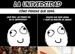 Enlace a La realidad de la universidad