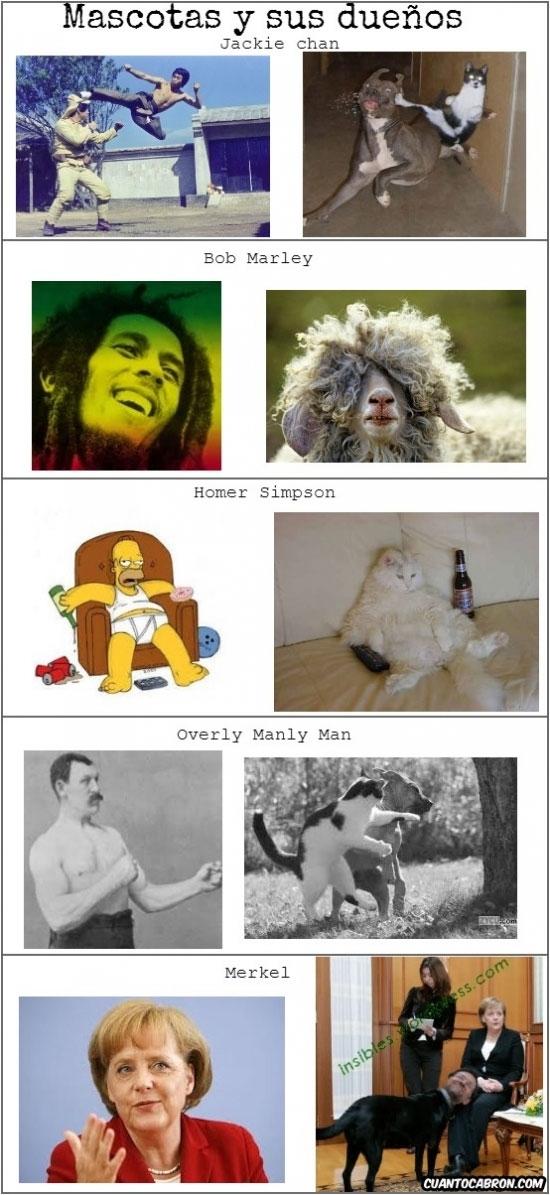Otros - Mascotas y sus dueños