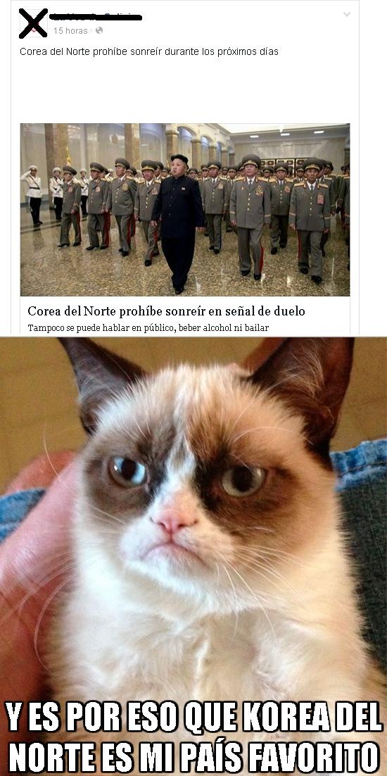 Grumpy_cat - Grumpy Cat, consejero delegado del dictador de Korea del Norte
