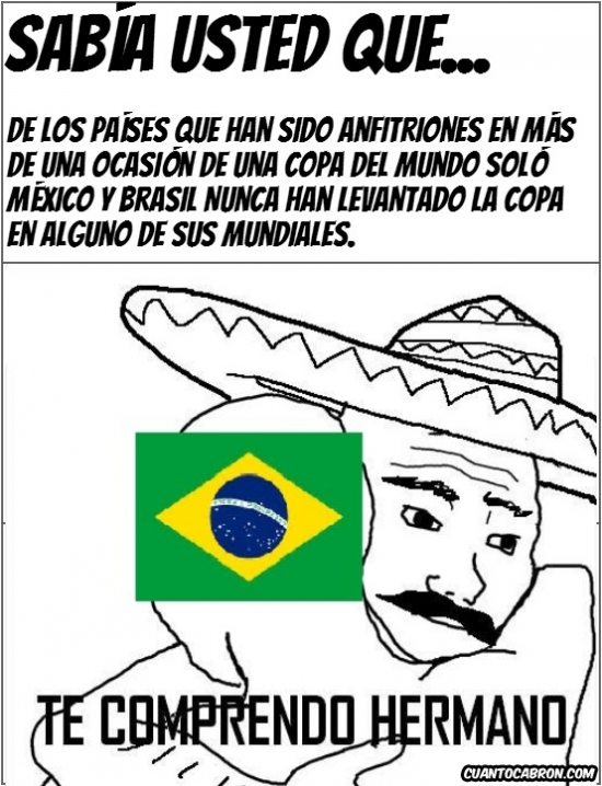 Otros - ¡Alguien entiende a los Brasileños!