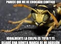 Enlace a Lógica de los insectos