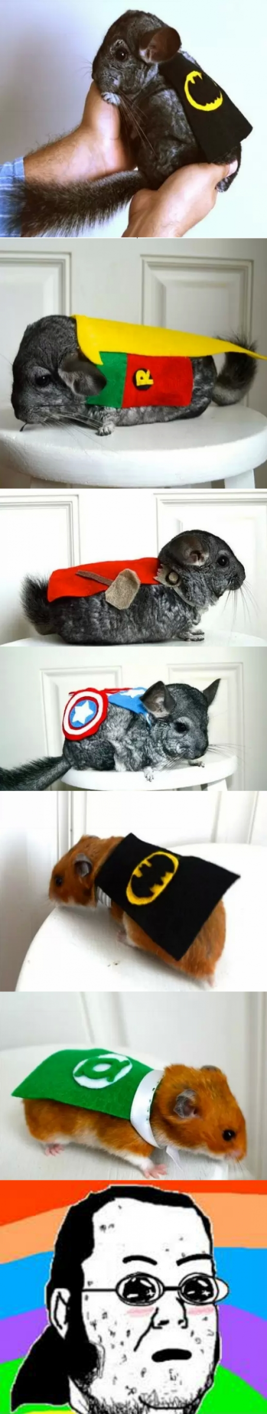 Friki - ¡Chinchillas vestidas de superheroes!
