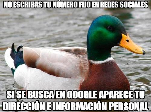 Pato_consejero - Un consejo de seguridad en Internet