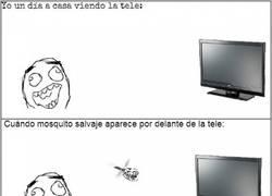 Enlace a la invisibilidad de los mosquitos delante de las pantallas