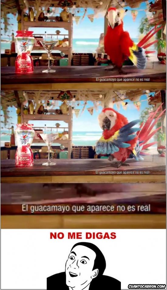 No_me_digas - ¿Sabes el anuncio del guacamayo que se congela?