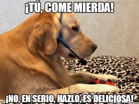 Meme_otros - No dejes jugar al Call of Duty online a tu perro