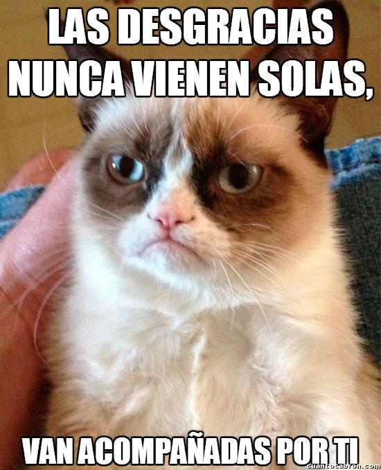 Grumpy_cat - Las desgracias nunca vienen solas