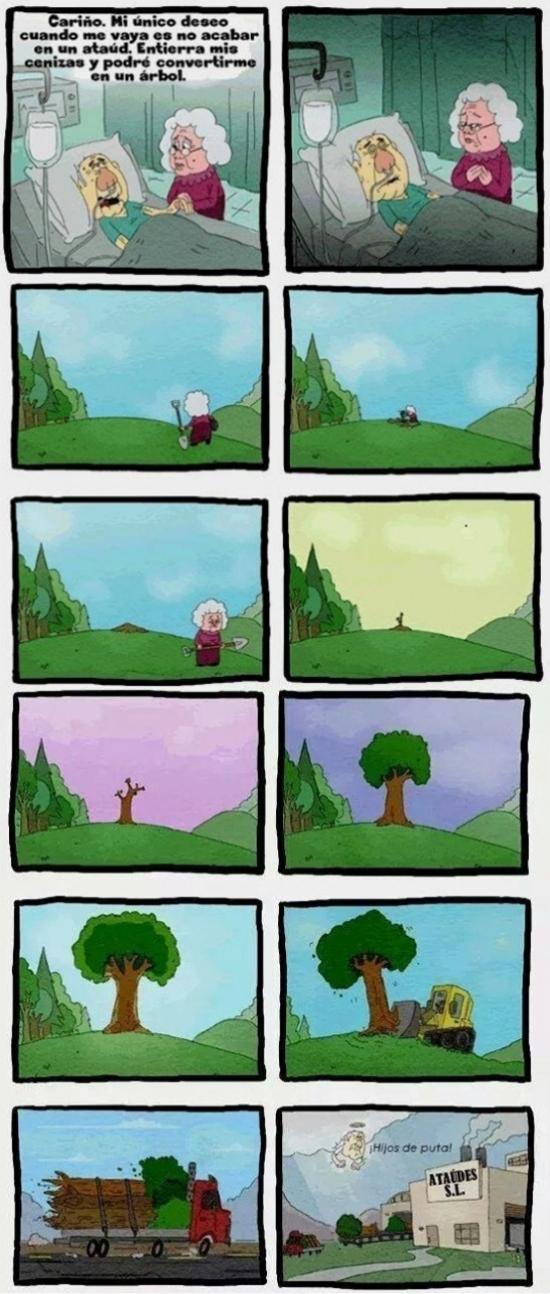 arbol,así es la vida,ataud,cenizas,crueldad,enterrar,madera
