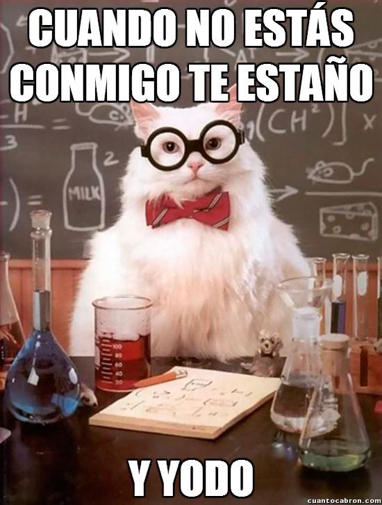 Gato_quimico - El lado romántico del gato químico
