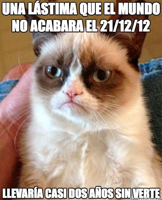 Grumpy_cat - Al menos hubo alguien que esperó el 21 de diciembre del 2012 con ansias