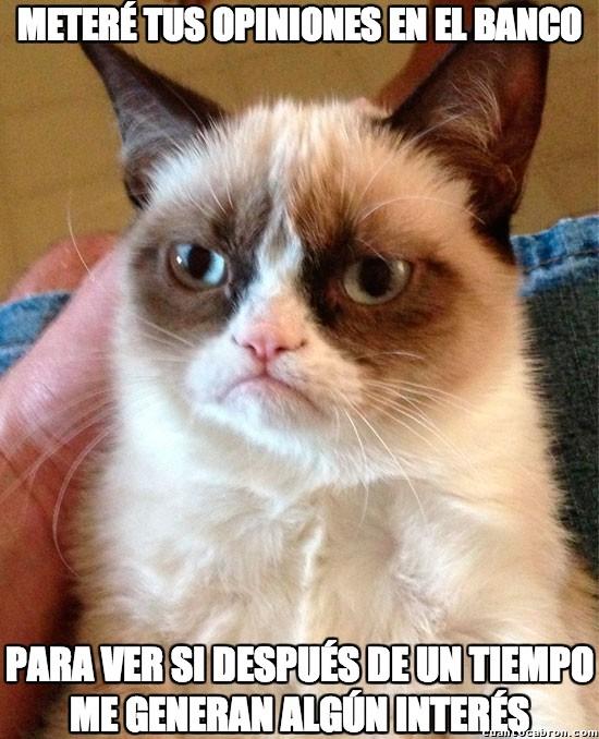 Grumpy_cat - Tu opinión carece de interés