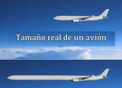 Enlace a Aviones en la vida real, aviones en las películas