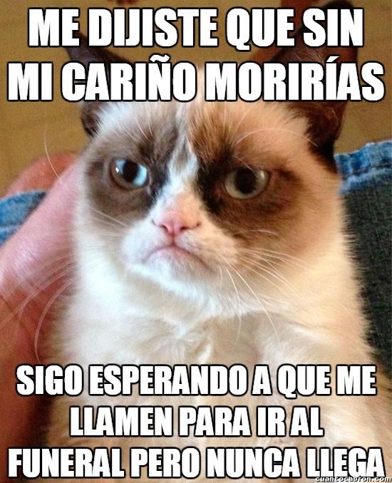 Grumpy_cat - ¡Cumple lo que dices, humano!