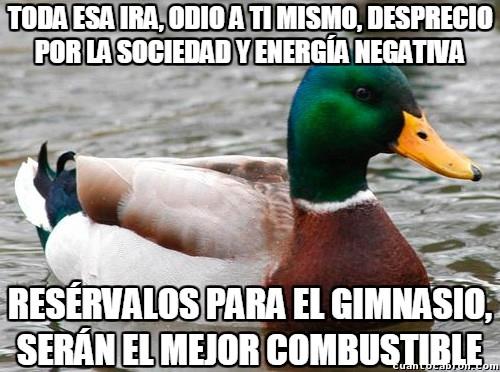Pato_consejero - Una manera de reconducir tu vida