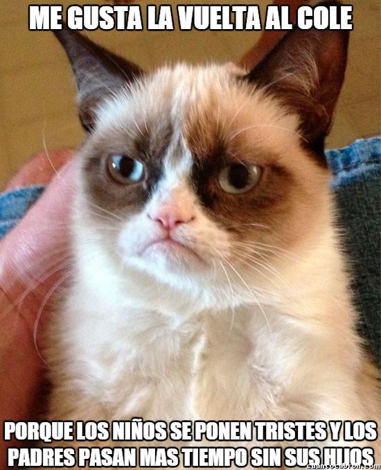 Grumpy_cat - Algunos sí se alegran de la vuelta al cole