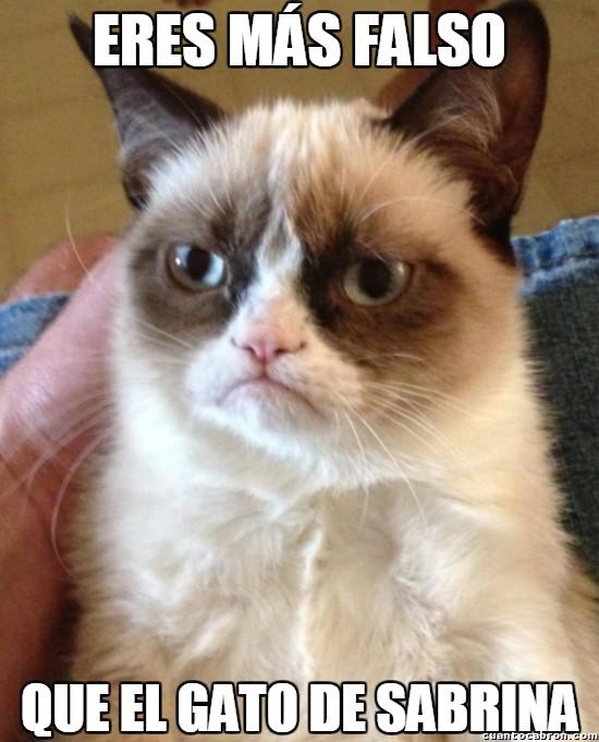 Grumpy_cat - No hay nada más falso