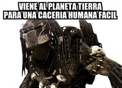 Enlace a Bad Luck Predator