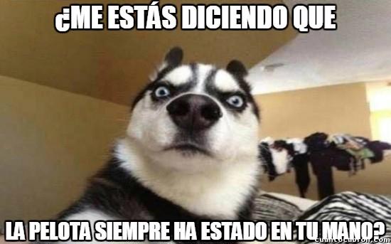 Meme_otros - El perro escéptico