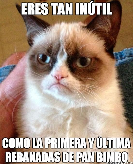 Grumpy_cat - Inutilidad máxima