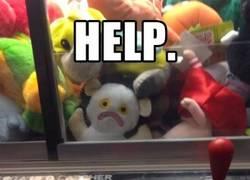 Enlace a ¡Que alguien le ayude, pobrecito!