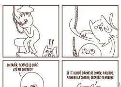 Enlace a ¡Antes de morir, alimenta al gato!