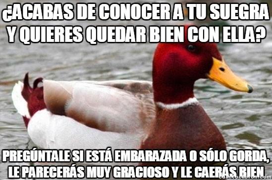 Pato_mal_consejero - La frase ideal para caerle bien a tu nueva suegra