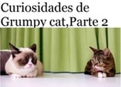 Enlace a Segunda y última entrega de las curiosidades sobre Grumpy Cat