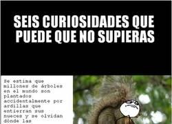 Enlace a Curiosidades naturales