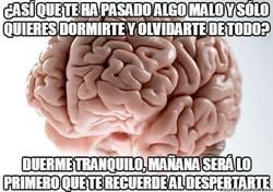 Enlace a ¡Buenas noches, cerebro!