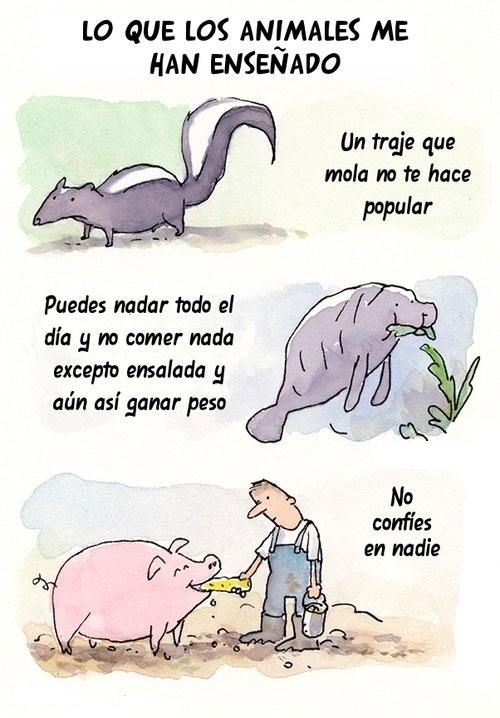 Otros - Los animales me han engañado que...