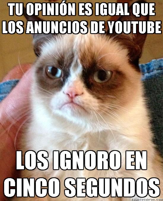 Grumpy_cat - ¿Sabes a qué me recuerda tu opinión?