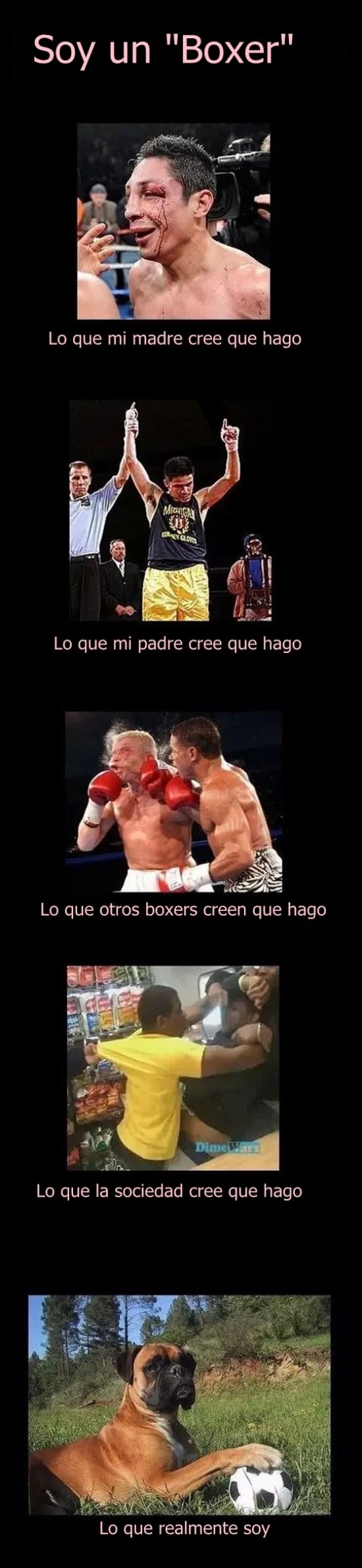 Meme_otros - Prejuicios de los ''boxers''