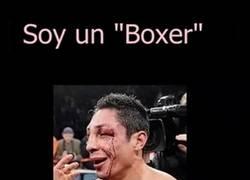 Enlace a Prejuicios de los ''boxers''
