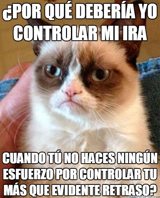 Grumpy_cat - Grumpy tiene todos los motivos para ser así